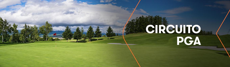 ¿Volverá el Rey del Golf, Tiger Woods, a disputar algún torneo del circuito PGA?